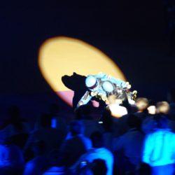 BUGGY ROLLIN videos 2011